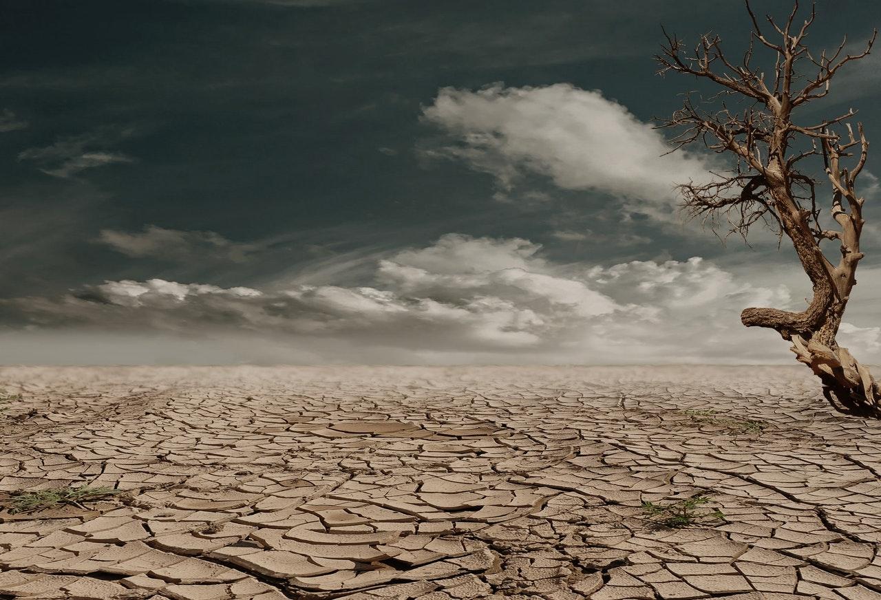 Die Pariser Klimakonferenz